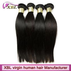 Extensions de cheveux vierges brésilien Top Grade Remy Cheveux humains