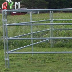 Passeios a Cavalo de gado da Barragem Paddock porta paralela de exploração pecuária a Régua