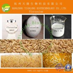 Florasulam (98%TC,50SC, 10%WDG)-erbicida