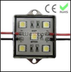 Module LED avec socle en aluminium pour signer la case de l'éclairage