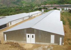 표준 C-Section Steel Structure Chicken House