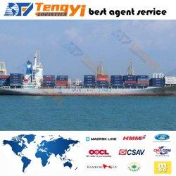 専門の安全な、信頼できる国際的なシーエアー輸送または発送取扱店か出荷の運送業者