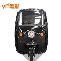 Jinpeng 판매 Trike 납품 화물 전기 세발자전거를 위한 특별한 화물 자전거