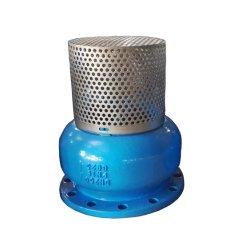 Gg25 PN16 Fonte de la pompe d'admission de l'eau de levage de clapet de pied type galette VANNE PAPILLON Vanne d'eau