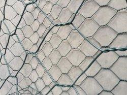 重い亜鉛上塗を施してある二重ねじれによって編まれる網Gabion