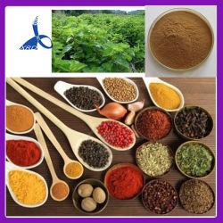 中国メーカー天然ビルベリーエキス CAS : 84082-34-8 サプリメント用エキス