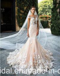 Шампанское свадебные платья чисто верхней части кружева вышитого тюля свадьбы Gowns H147235