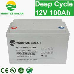 Yangtze는 AGM 2 * 12V 24V 100ah 솔라 배터리 충전기를 가장 잘 판매합니다