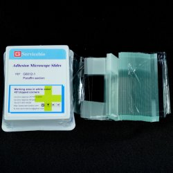 Microscópio de aderência em lâminas de vidro instrumento de laboratório