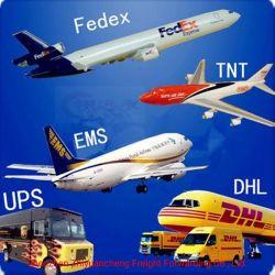 الشحن السريع الشحن السريع مندوب التوصيل السريع من الباب إلى الباب الصين إلى أوروبا ألمانيا إيطاليا بواسطة شركة DHL UPS FedEx TNT