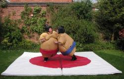 Sumoは子供及び大人のためのゲームに適する