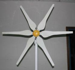 300W de Turbine van de wind, 300W de Generator van de Wind, 300W de Molen van de Wind