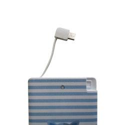 Novo Núcleo de energia 2500 com cabo no carregador portátil com relâmpagos e micro, cabo de banco para iPhone e a Samsung