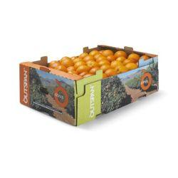 Prix bon marché des plateaux de fruits et légumes, une grande stabilité des charges, la capacité d'empilage, faciliter le transport de produits frais, gardien de la fraîcheur de la chaîne logistique