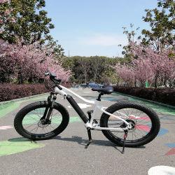 Changzhou potente eléctrico Bike Dirt Bike nueva bicicleta eléctrica neumático Fat Bicicleta China fuera de carretera bicicletas de adultos