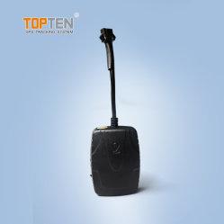 Sistema de seguimiento GPS 3G red WCDMA, mando a distancia de corte, de 24 horas de coche traza por APP/Plataforma MT35-EZ