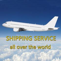 Agente transitario compañía naviera de la ascensión de México, Angola, Austria, Argentina