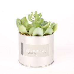 De verglaasde Pot van de Bloem van de Bonsai van de Installatie Ceramische