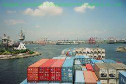 Beste Verschepende Forwarder van de OceaanVracht aan Taiwan
