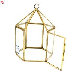 Travando geométrica de vidro de Mudas House para ar/Plantas suculentas