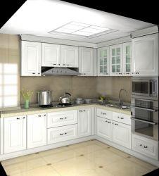 Cuisine moderne en bois du cabinet de dessins et modèles de porte d'unités de cuisine complètes