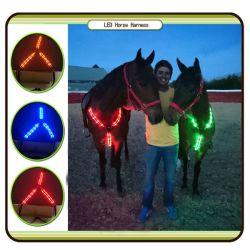 Indicatore luminoso illuminato del freno del Halter della cinghia di cablaggio del cavallo del LED per i prodotti del Equestrian del cavallo