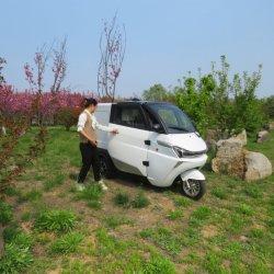 سيارة فان صغيرة بثلاثة عجلات L6e معتمدة كهربائية إمداد مصنع السيارة
