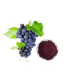 Hot Sale 95 % proanthocyanidines Extrait de pépins de raisin biologique poudre P. E. de pépins de raisin