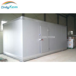 Cold Chamber of Fruits/Gemüse/Meet Storage