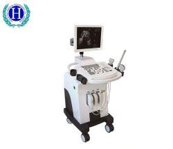 Hbw-11 의학 진단 장비 가득 차있는 디지털 트롤리 흑백 초음파 스캐너