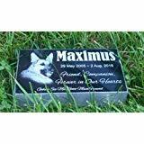Granit-Erinnerungsdenkmal für Tier, Haustier-Denkmal
