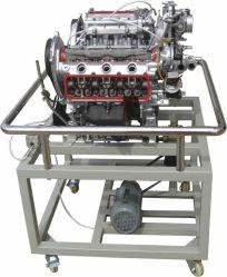 Modello automatico del motore di automobile della benzina