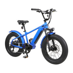 Hot Selling 20inch Mountain Fat Tire Beach Cruiser bicicletta elettrica 350 W/500 W/750 W.