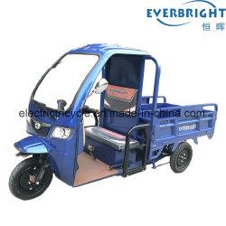 China la fabricación de 60V800W tres ruedas carga triciclo eléctrico Moto triciclo carretilla