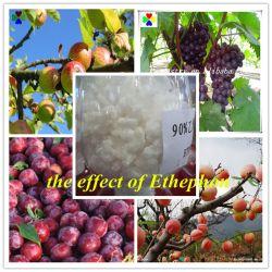 مارموتر الفاكهة Ethyphon 90% TC CAS 16672-87-0
