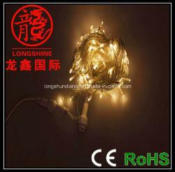 Kontrollierbare LED-Zeichenkette-Leuchte (LS-SD-10-100-M1)