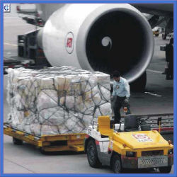 Logistics international From Shenzhen Chine à Cotonou/à Apapa (IC013)