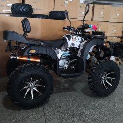 12inch de brede van de Legering Krachtige 4X2 ATV Vierling van het Wiel 250cc