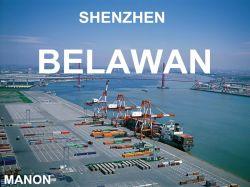 Стабильной службы доставки в Шэньчжэне в Belawan