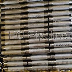 Std/Sch40/Sch80/Sch160 из нержавеющей стали SS304/316L сварные трубы соски