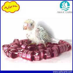 Boucle de emballage en aluminium de pigeon avec l'impression de numéro de laser