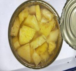 Excellente qualité de récolte fraîche les ananas en conserve des morceaux