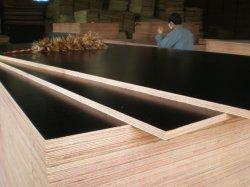 Película cara de madera contrachapada de 1220x2440x18 mm Blak película para la construcción