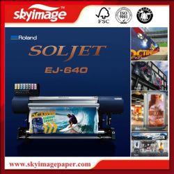 Nova Economia Roland Soljet Ej-640 Eco-Solvent Storformat máquinas de impressão