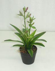 Mini violet/vert en plastique de plantes succulentes artificielle du semoir avec la racine pour décoration intérieure