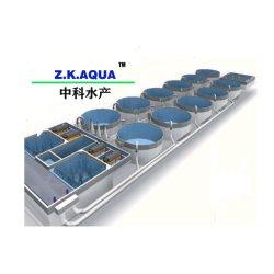양식업 대형 AS 번식 시스템 실내 어류 농기계 시스템