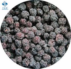 Frutinhas congeladas IQF Sinocharm Blackberry
