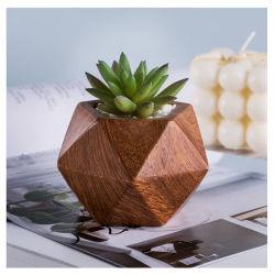 Céramique en bois motif plante succulente Pot plante Cactus Pot Flower Pot contenant jardinière cadeau