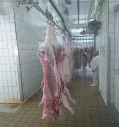 Automatische slachterij machine Pork Pig Abattoir Equipment