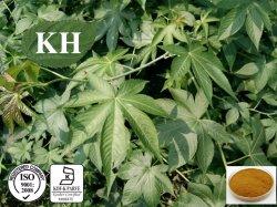 감미로운 차잎 추출; Rubusoside 70%, 90%, HPLC의 95%